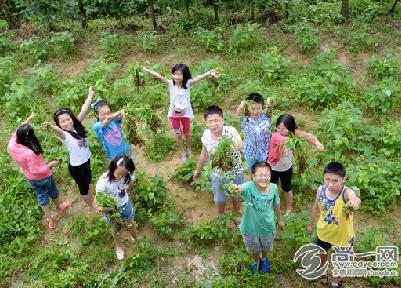 田园儿童 效果图