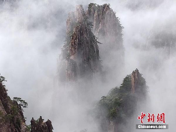 1月10日,安徽黄山风景区阴雨绵绵,云雾从峰谷间缓缓升腾漂浮,笼罩山峰